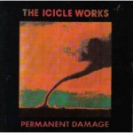 The Icicle Works, 'Permanent Damage'