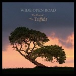 The Triffids, 'Wide Open Road'