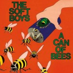 The Soft Boys, 'A Can of Bees'