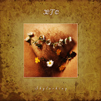 XTC, 'Skylarking' original 'banned' cover