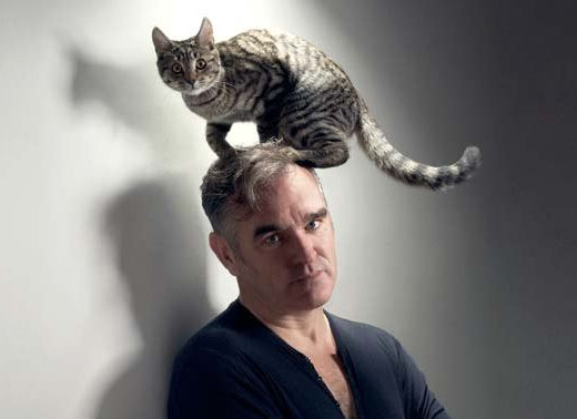 Hey, look, it's another picture of Morrissey with a cat sitting on top of his head