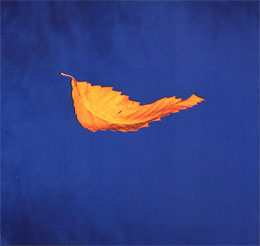 New Order, 'True Faith'