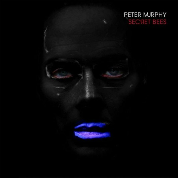 Free MP3: Peter Murphy, 'Gaslit' — off new 'The Secret Bees of Ninth' digital EP