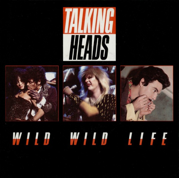 Talking Heads 'Wild Wild Life'
