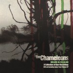 The Chameleons, 'Dreams in Celluloid'