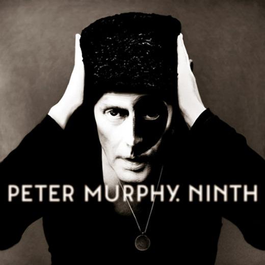 Stream: Peter Murphy, 'Velocity Bird'